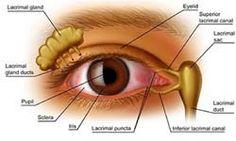 Obat Herbal Penyakit Mata Silinder tanpa efek samping, dan bisa dipesan melalui sms. BARANG DATANG BARU BAYAR.