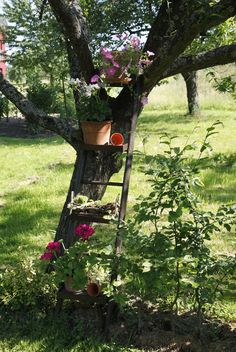 12 Deko-Ideen für den Garten 12 decoration ideas for the garden 12 decoration ideas for the garden Garden Tools, Garden Art, Diy Garden, Outdoor Gardens, Garden Decor, Garden Deco, Garden Shelves, Amazing Gardens, Plants