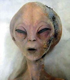 Real Alien Pictures, Photos, images, and Sightings