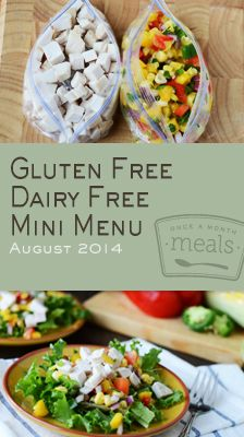 Gluten Free Dairy Free Mini August 2014 Menu | Once A Month Meals | OAMC | Freezer Cooking | Freezer Meals | Customized Shopping List | Cust...