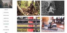 2 sites pratiques pour réunir des images et vidéos libres et gratuites | Blog du Webdesign