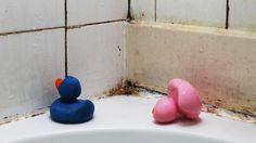 Moisisures dans le coin d'un bain avec deux canards en plastique