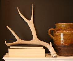 styling - Norwegian bleached antler