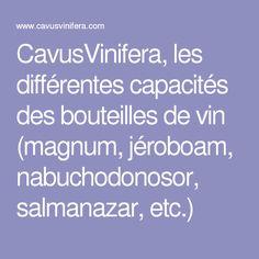 CavusVinifera, les différentes capacités des bouteilles de vin (magnum, jéroboam, nabuchodonosor, salmanazar, etc.)