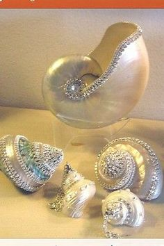 5 XL Jewel Sea Shells with Swarovski Crystals Free Shipping Handcrafted | eBay