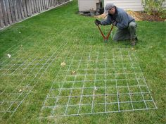 How to build a greenhouse in one afternoon using cattle panels