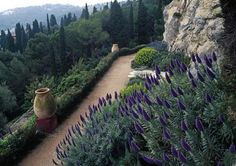 Les Colombières , high in the hills of Garavan in Menton France, was created between 1918 and 1927 by Ferdinand Bac (1859-1952), comic writer, illustrator and designer. It is a series of small gardens.