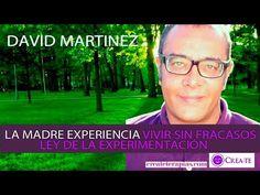 LA MADRE EXPERIENCIA ó LA LEY DE EXPERIMENTACIÓN - David Martínez VIVIR SIN FRACASOS - YouTube