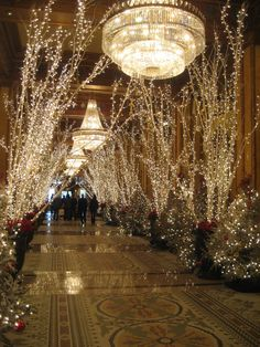 The Roosevelt Hotel New Orleans at Christmas