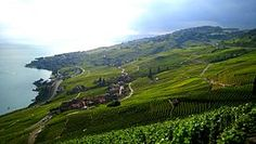 Epesse Village in Lavaux Wineyards, Switzerland Canton, Le Village, Go Outside, Golf Courses, Vineyard, Tours, Mountains, Places, Travel