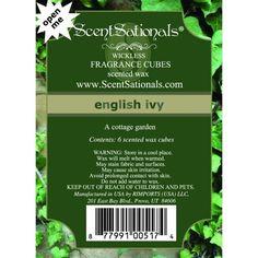 ScentSationals Wax Cubes Turkish Spice Market