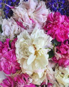 205 отметок «Нравится», 2 комментариев — Watercolor Picture 🎨 Акварель (@xtina_gavrilova_art) в Instagram: «Peonies//Увядшая красота Peonies from the grandma garden//Пионов много не бывает…»