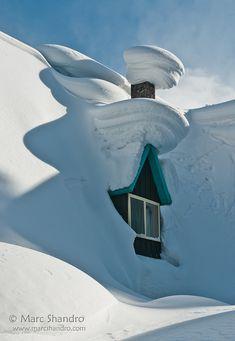 Magic of snow…❄? Magic of snow…❄? Magic of snow…❄? Magic of snow…❄? Winter Szenen, I Love Winter, Winter Magic, Winter White, Winter Christmas, Magic Snow, Prim Christmas, Winter Fairy, Christmas Scenes