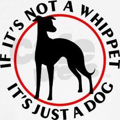Whippet Ringer T