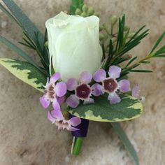 Ivory spray rose, pink wax flower, purple ribbon, pittosporum, eucalyptus boutonniere #SunshineDesigns #HiltonPensacolaBeach #HiltonPeanscaolBeachWedding #PensacolaBeachWedding #BeachWedding