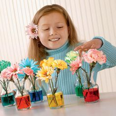 Fun and easy. Just cut stems of white flowers put in warm water with food coloring.