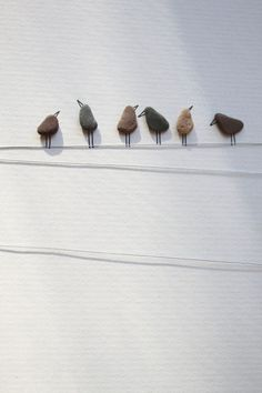 Birds on a wire - Ooooh, I think I'll take some river rocks and some twine, and make one of these on the bare wall in the guest bedroom.  Cute and cheap, two of my favorite things!