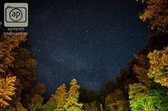 #oregon #milkyway #stars #trees #photography Milky Way over Oregon.