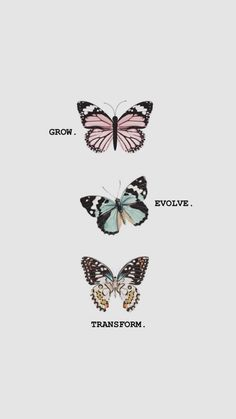 Butterfly Discover Self love quotes Grow. Transform Self love quotes Grow. Butterfly Wallpaper Iphone, Iphone Background Wallpaper, Aesthetic Iphone Wallpaper, Aesthetic Wallpapers, Screen Wallpaper, Iphone Background Quotes, Cute Tattoos, Finger Tattoos, Small Tattoos