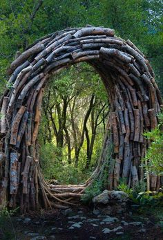 Forest Sculptor Spencer Byles