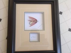 Artistic fly framed for the Moncton show. By Bob Mac Donald