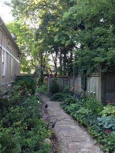 Lovely shady side yard garden
