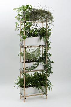 stelz Green Fashion, Garden Styles, Ladder Decor, My House, Cool Stuff, Plants, Diy, Home Decor, Products