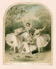 Carlotta Grisi, Fanny Cerrito, Marie Taglioni and Lucile Grahn in Pas de… Art Ballet, Ballet Painting, Ballet Dancers, Ballerinas, Ballet Studio, Ballet Vintage, Ballerine Vintage, Costume Fleur, Ballet Illustration