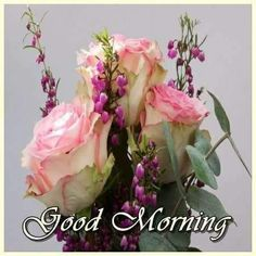 Good Morning Good Night, Good Morning Quotes, Morning Flowers, Pictures Images, Corporate Gifts, Positive Thoughts, Floral Wreath, Beautiful Ladies, Mornings