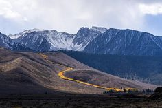 Golden Aspen River Fine Art Photography Prints For Sale By Priya Ghose - A golden river of aspen trees flows down the steep autumn hillsides, with the Eastern Sierra Mountain range lightly dusted with snow in the background. Photograph taken north of Mono Lake, California. #Landscape #Photography #AspenTrees