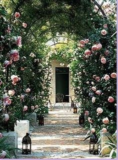 An arbor holds up the estate's famous pink roses, Pierre de Ronsard.