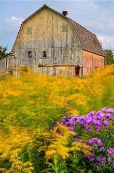 Image result for Country Living Old Barns