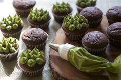Super Chocolatey Cupcakes w/ Matcha Green Tea Frosting