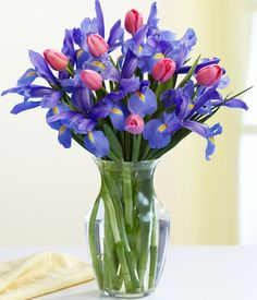 all the colors of the iris flower | Iris Flower Arrangements: Buy Iris Flowers Online, Iris Flower ...