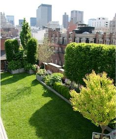 Manhattan-based designers Chris and Lisa Goode of Goode Green are pioneers in the green roof movement in New York. In 2006, they restored a dilapidated building in Little Italy, working with architect Andrew Berman to build a penthouse apartment with a 6,000-square-foot green roof garden, including a lawn, rose bed, trees, and a vegetable garden in back of the kitchen.