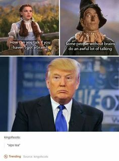 The Wizard of Oz predicted Trump