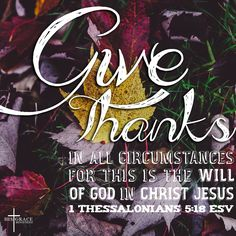 In all circumstances give thanks to God! #verseoftheday  #thankful #givethanks