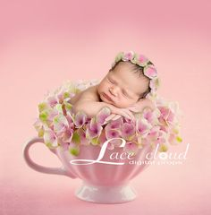 Digital newborn backdrop Newborn background by LaceCloudStudio