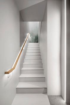 A Renovated, State-of-the-Art Vet Clinic in Montréal - Design Milk Interior Design Classes, Clinic Interior Design, Clinic Design, Staircase Handrail, Wood Stairs, Staircase Design, Milk Shop, Vet Clinics, Interior Stairs