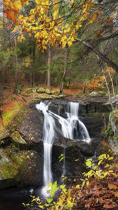 Enders Falls State Park - Granby, Connecticut --- i seriously want to move to this state when I'm older! Such a rich vibrant beautiful state Beautiful Waterfalls, Beautiful Landscapes, Places To See, Places To Travel, Beautiful World, Beautiful Places, Landscape Photography, Nature Photography, Autumn Scenes