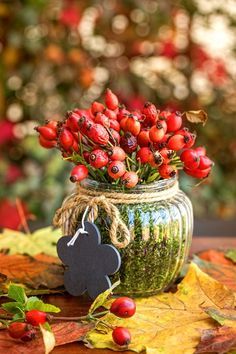 Podzimní dekorace za pár korun ozdobí stůl v obýváku i komodu v předsíni. Inspirujte se! - Proženy Fruit Decorations, Christmas Decorations, Holiday Decor, Non Floral Centerpieces, Christmas Art, Christmas Ornaments, Deco Nature, Little Gardens, Floating Flowers