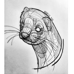 #nouvellerita #tattoosketch #ferret #linework