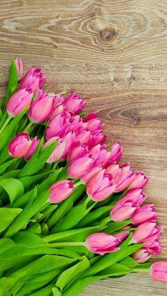Tulips #Flowers