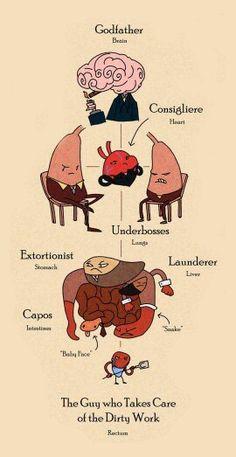 Organ-ized crime #humor #science