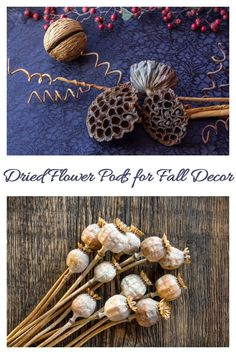 Dried lotus and poppy flower pods for decorating with natural elements. There are loads of other fall greenery supplies that can be found out in your garden. Check them out on The Gardening Cook. #ornamentalkale #ornamentalcabbage #fallgreenery #naturalfalldecor #decorating #gardening Garden Tips, Garden Projects, Garden Ideas, Natural Fall Decor, Ornamental Cabbage, Shade Trees, Flowering Trees, Sustainable Living, Amazing Gardens