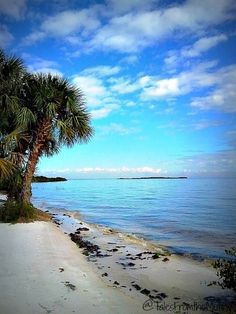 Cedar Key, Florida — by Tales From the Mutiny. I don't know how long Cedar Key will remain a secret since Men's Health just rated it as one of the best beaches in...