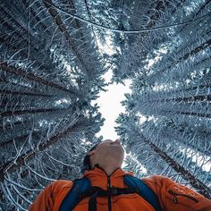 "Photo of the Day! Congrats to #GoProAwards recipient Tomaz Kovac for his awesome submission ""Winter Wilderness."" Such a cool photo! You can get rewarded for your best #GoPro content, submit via gopro.com/awards. #❄️"