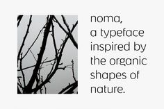 Noma | Kontrapunkt - Flawless Typography