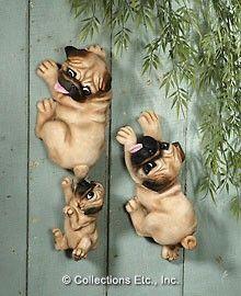 Hangin' Around Pugs   Shop entertainment   Kaboodle