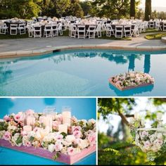 Start a new discussion or join an existing discussion about wedding planning, wedding themes, wedding etiquette and more. Floating Flowers, Wedding Etiquette, Wedding Themes, Dolores Park, Wedding Planning, Table Decorations, Home Decor, Floating Candles, Wedding Reception Themes